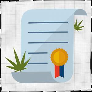 Cannabis Master Grower Certification Online Production Training Course Launched
