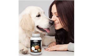 New Virgin Coconut Oil Pills Prove to be Suitable Dog Health Improvement Supplements