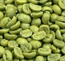 Scientific Background Behind Efficiency of Green Coffee Bean as a Fat Loss Alternative