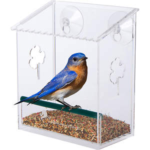 Bird Feeder Sales Soar as Bird Feeding Season Closes In