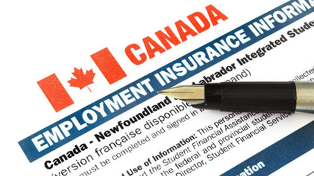 Canadian Employment Insurance