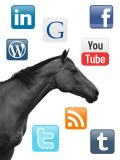 Equine Marketing Via Social Media For 2014