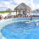 Swim with the dolphins at Punta Cana