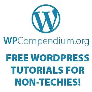 Wordpress Guides for Non Techies CMS Theme and SEO Benefits Collection Launched