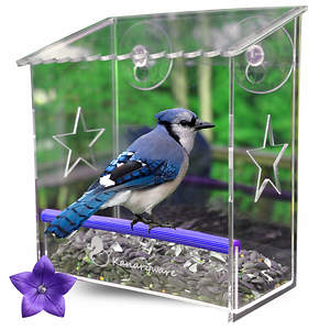 Window Bird Feeder Receives 300th Review on Amazon