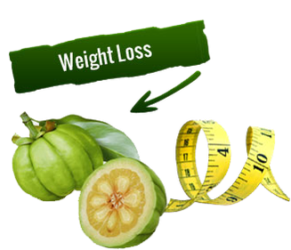 Garcinia Cambogia is A Most Effective Weight Loss Diet Plan States Dr. Oz.
