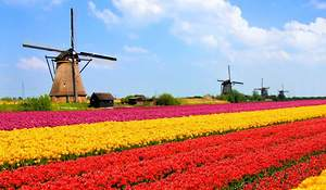 Holland No More, Welcome Netherlands