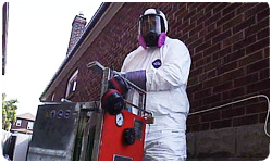 Mold Removal Toronto Company Launches New Video on Mouldx YouTube Channel