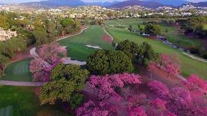 Andalucia Realty Reviews Golf Courses in Marbella to Help Golfers Choose