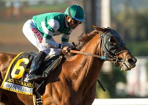 Accelerate the Horse to Back for Breeders' Cup Classic