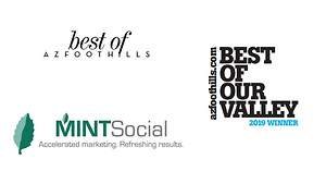 Mint Social Voted Best Social Networking and Online Media Firm